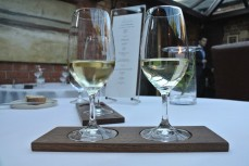 Pinot Gris and Scharzhof Riesling